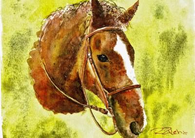 Skip Horse